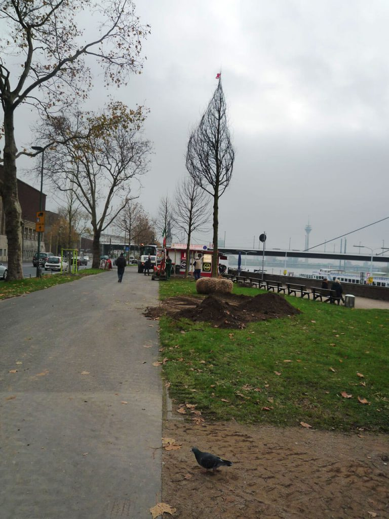 stadtbepflanzung_05